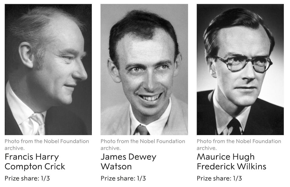 Nagroda Nobla 1962 - Watson, Crick, Wilkins