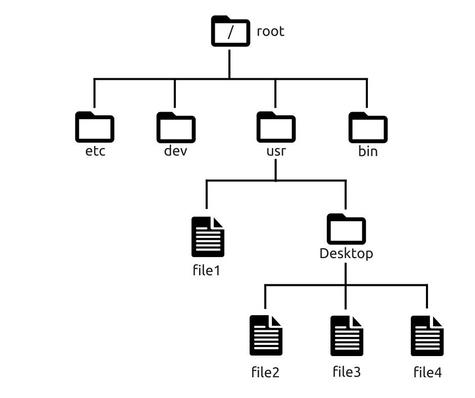 podstawowe komendy linux / system plików
