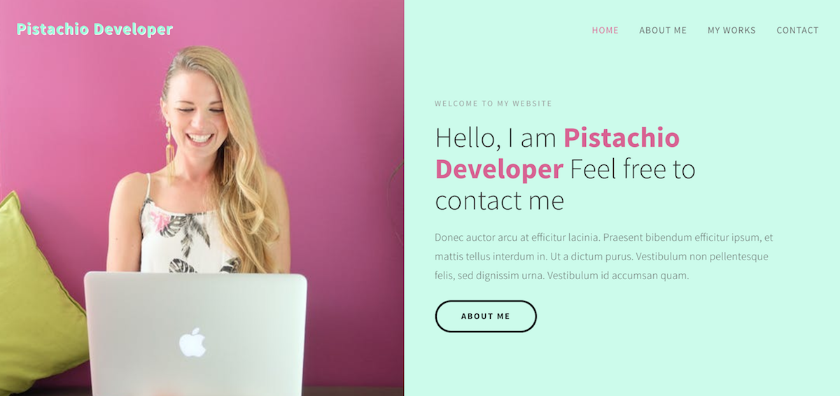 portfolio webdeveloper